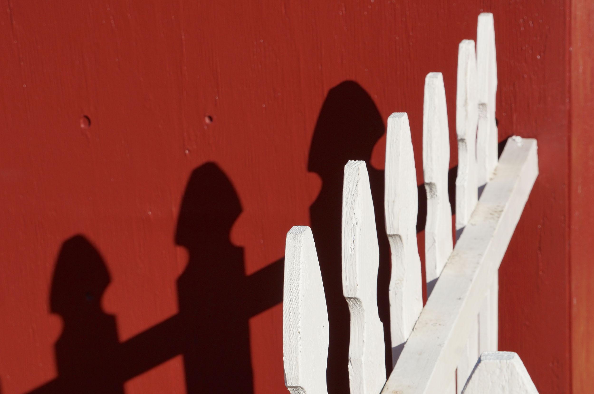fence.sm.jpg