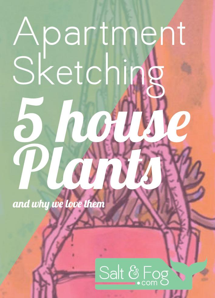 plant_sketches Header