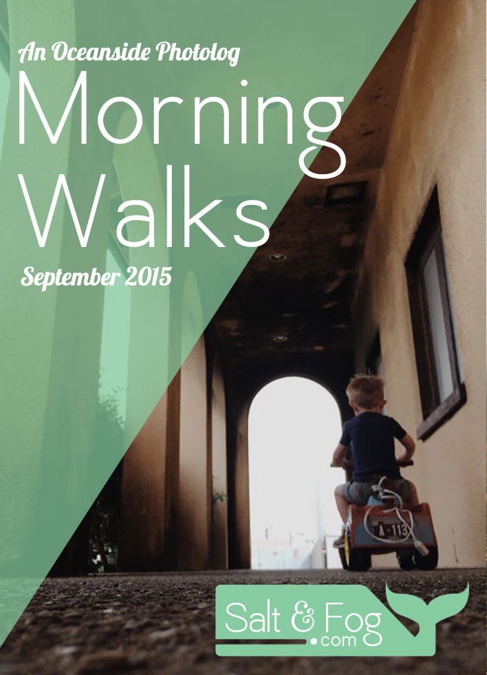 september_walks