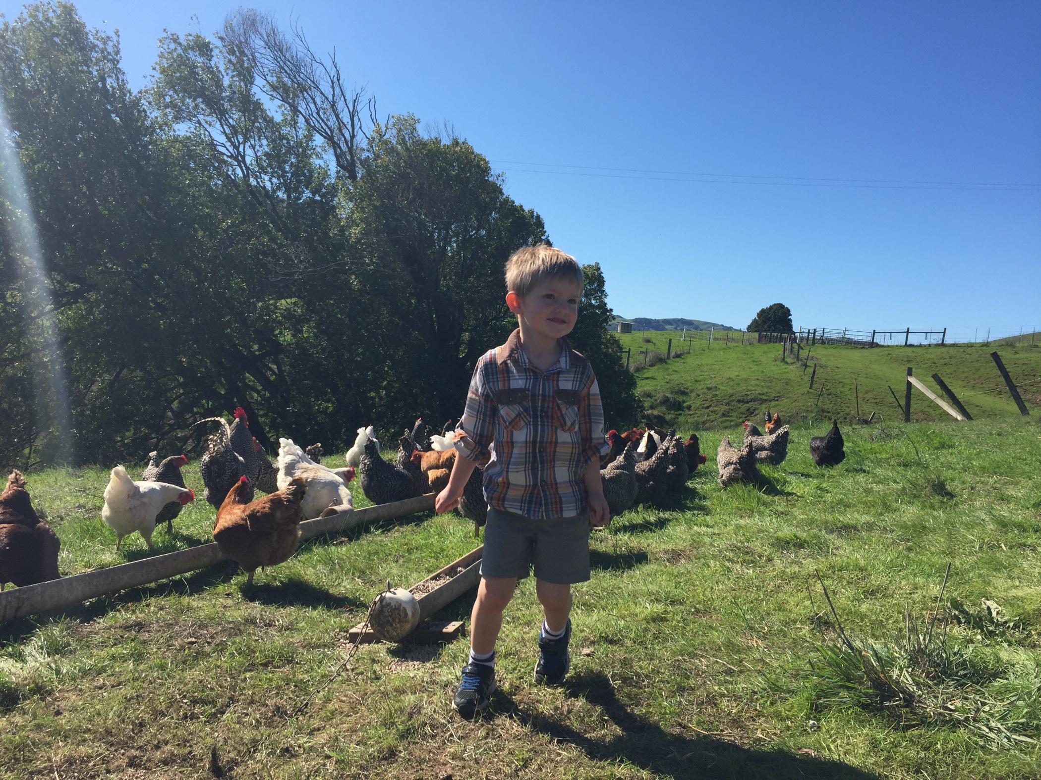 Luke_on_farm