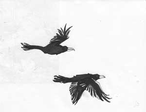 raven_1