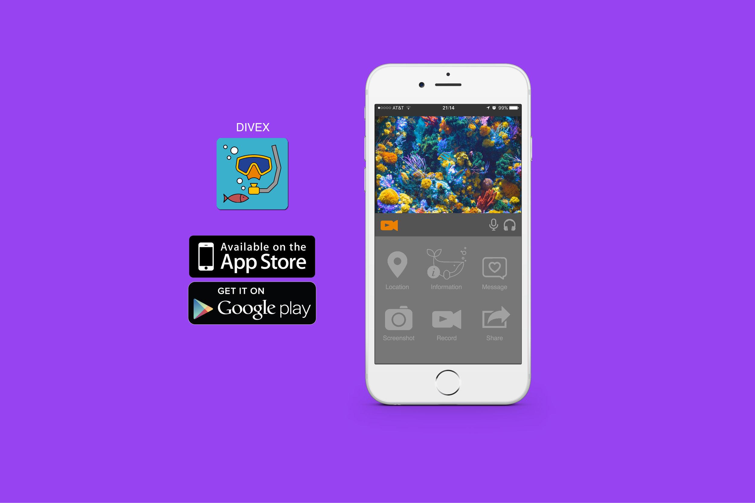 Jewel_Tolbert_DiveX App.jpg