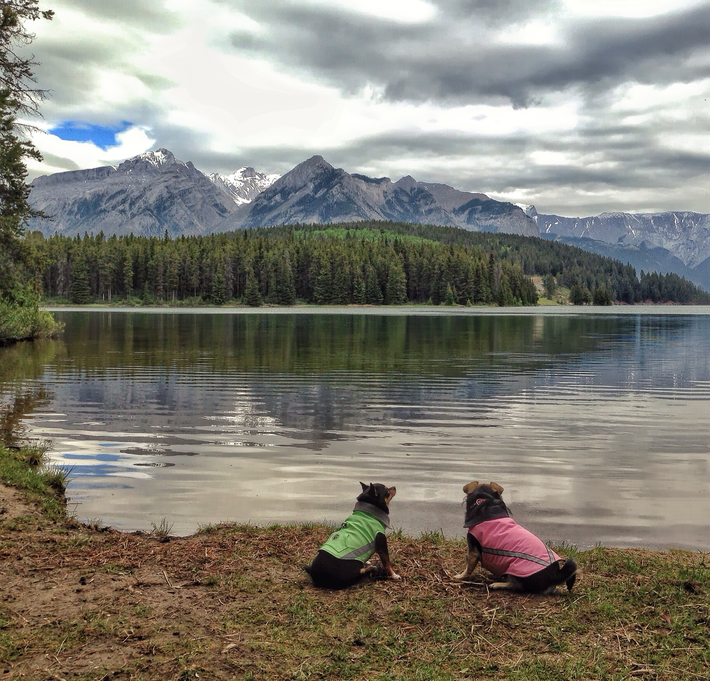Becca and Delgado contemplate Two Jack Lake in Banff National Park.