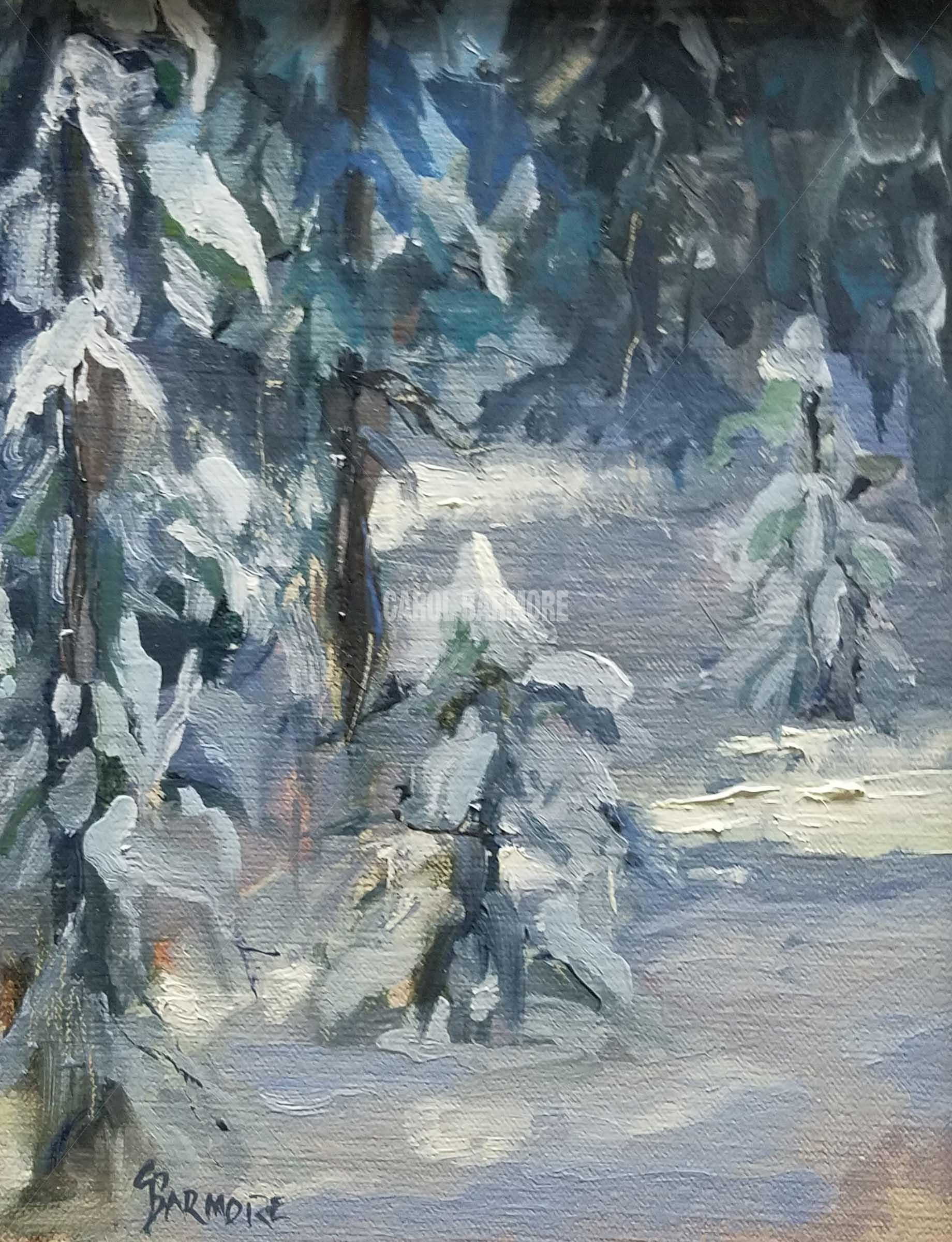 Hyalite In The Winter