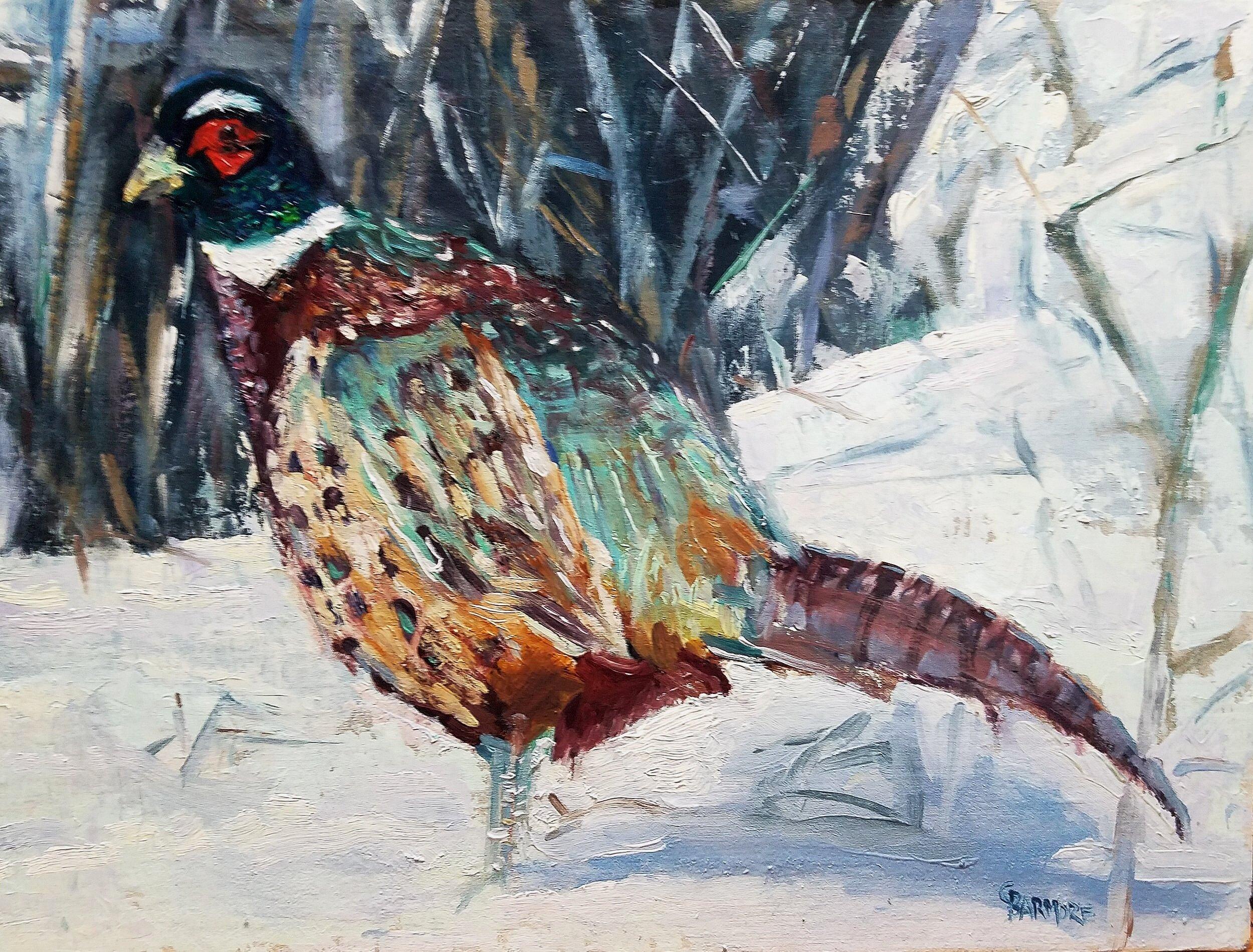 Pheasant in Winter