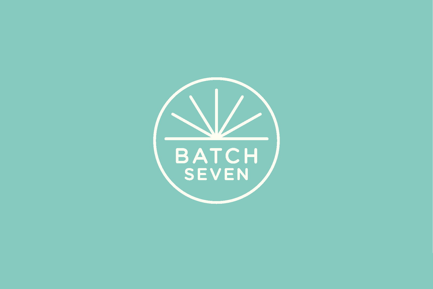 BatchSeven_Identity_Guidelines_Page_03.jpg