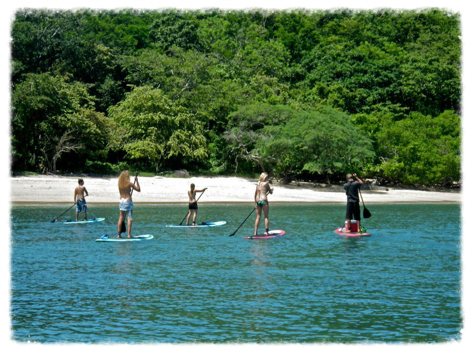 SUP, stand up paddle,  costa rica, family surf, adults only, papagayo, adventure water activities, andaz, occidental, four sesasons, exclusive resort, secrets, planet hollywood papagayo, occidental, mangroove, day trips, surfing