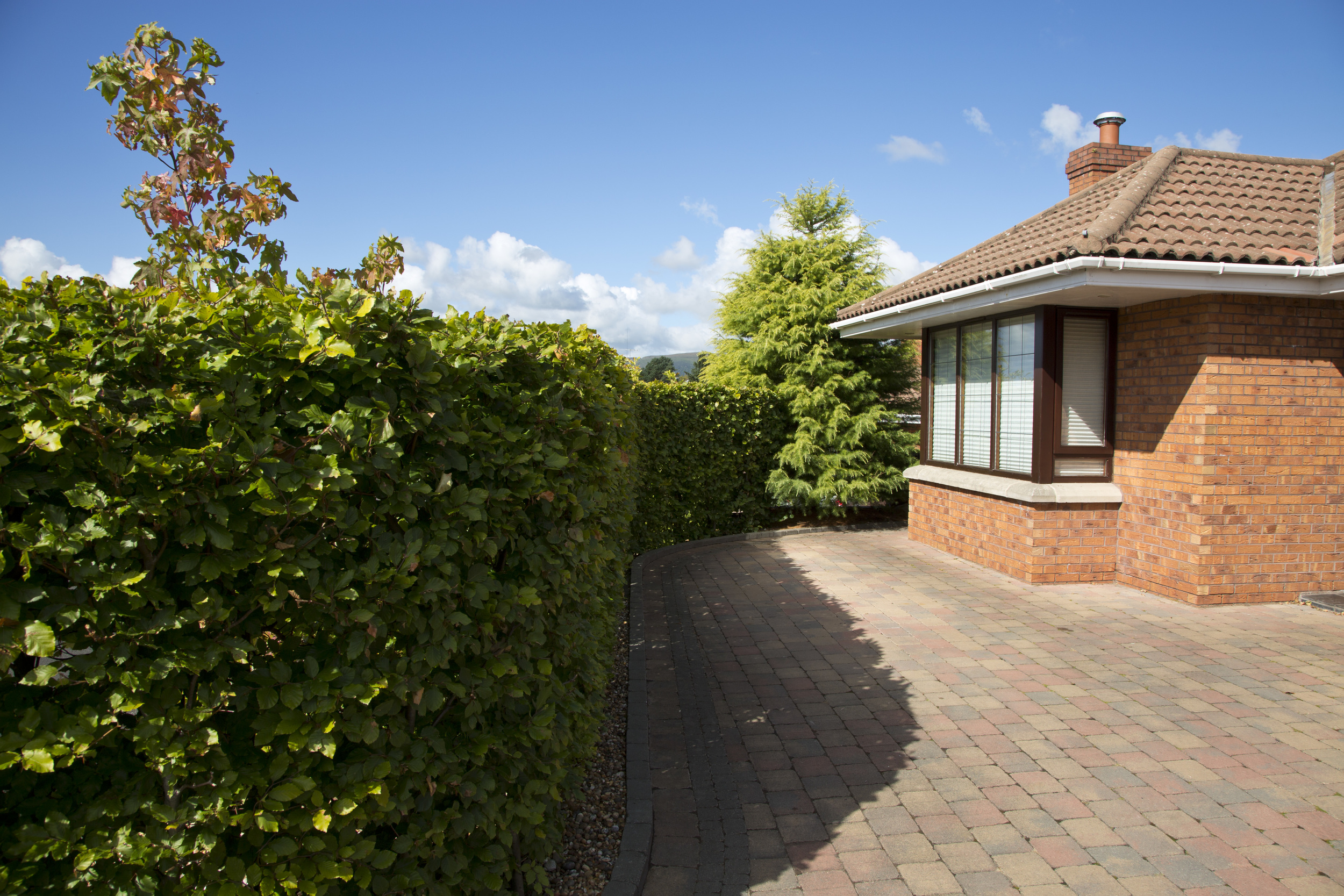 beech hedge and tobermore tegula paving belfast