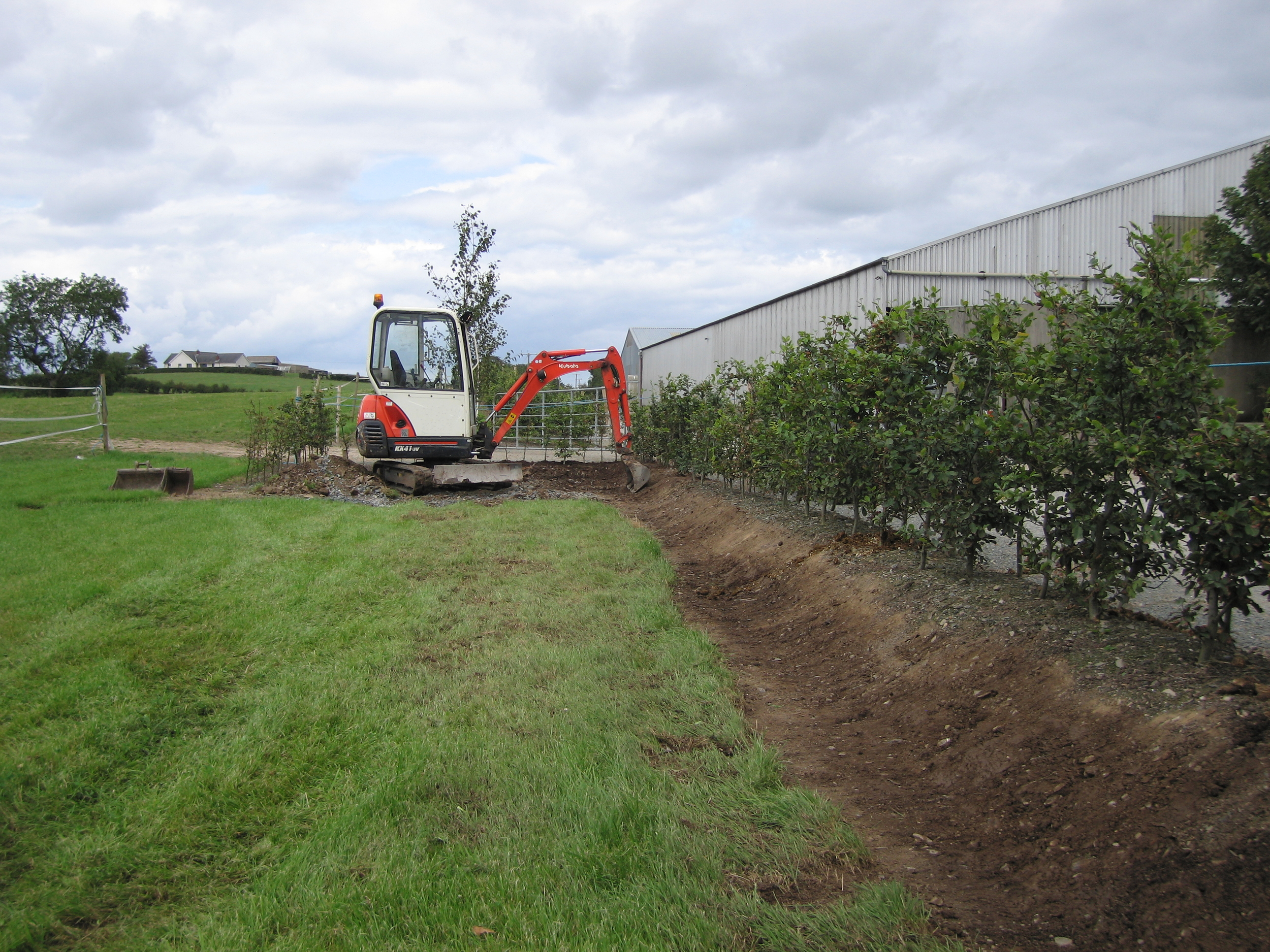 equestrian landscaping using beech hedging and bank