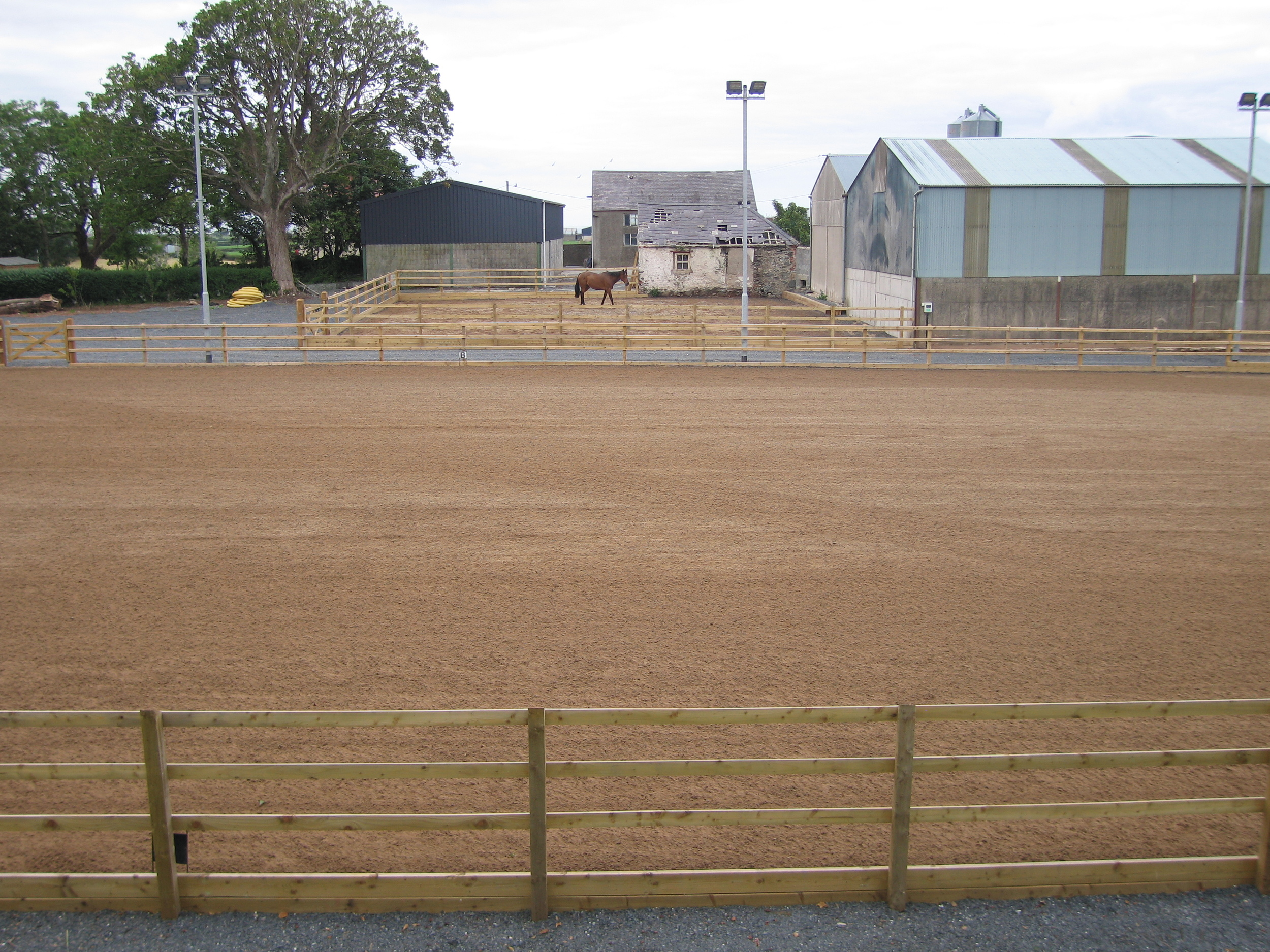 equestrian facilities with arena and lunging pen northern ireland