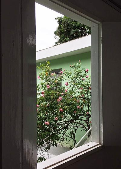 roseira.png