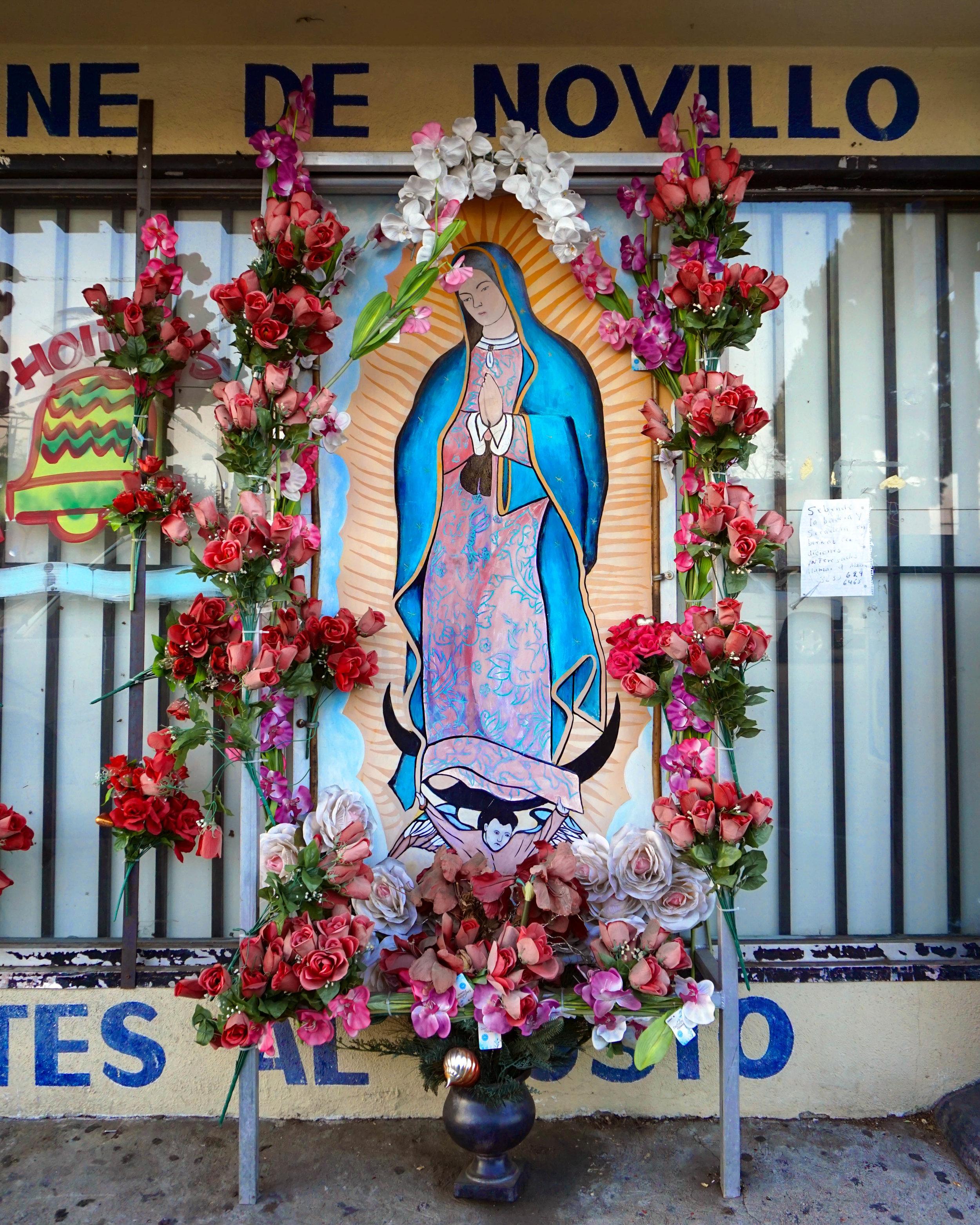 Guadalupe_Store_LEnnox-1.jpg