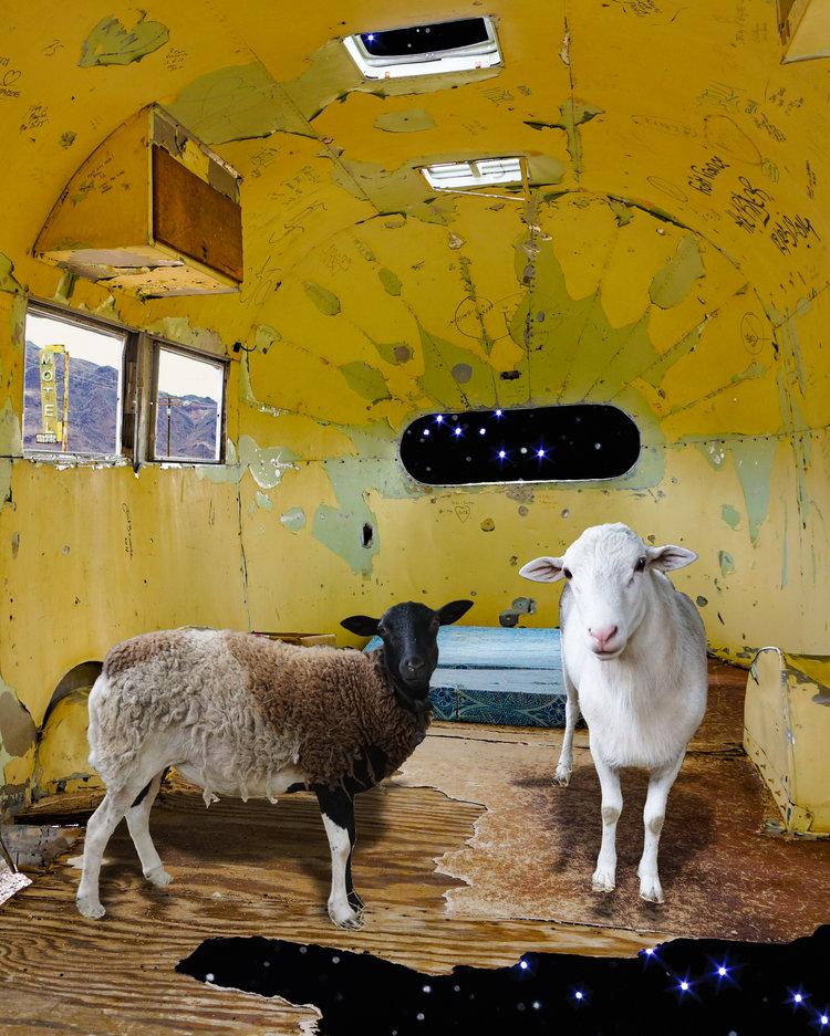 Sheep+Ship.jpg