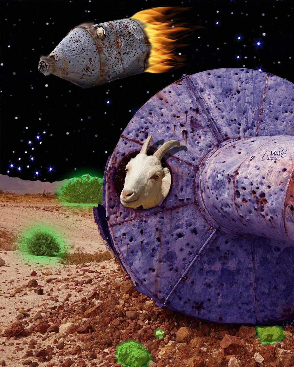 Goat Strange Vessel.jpg