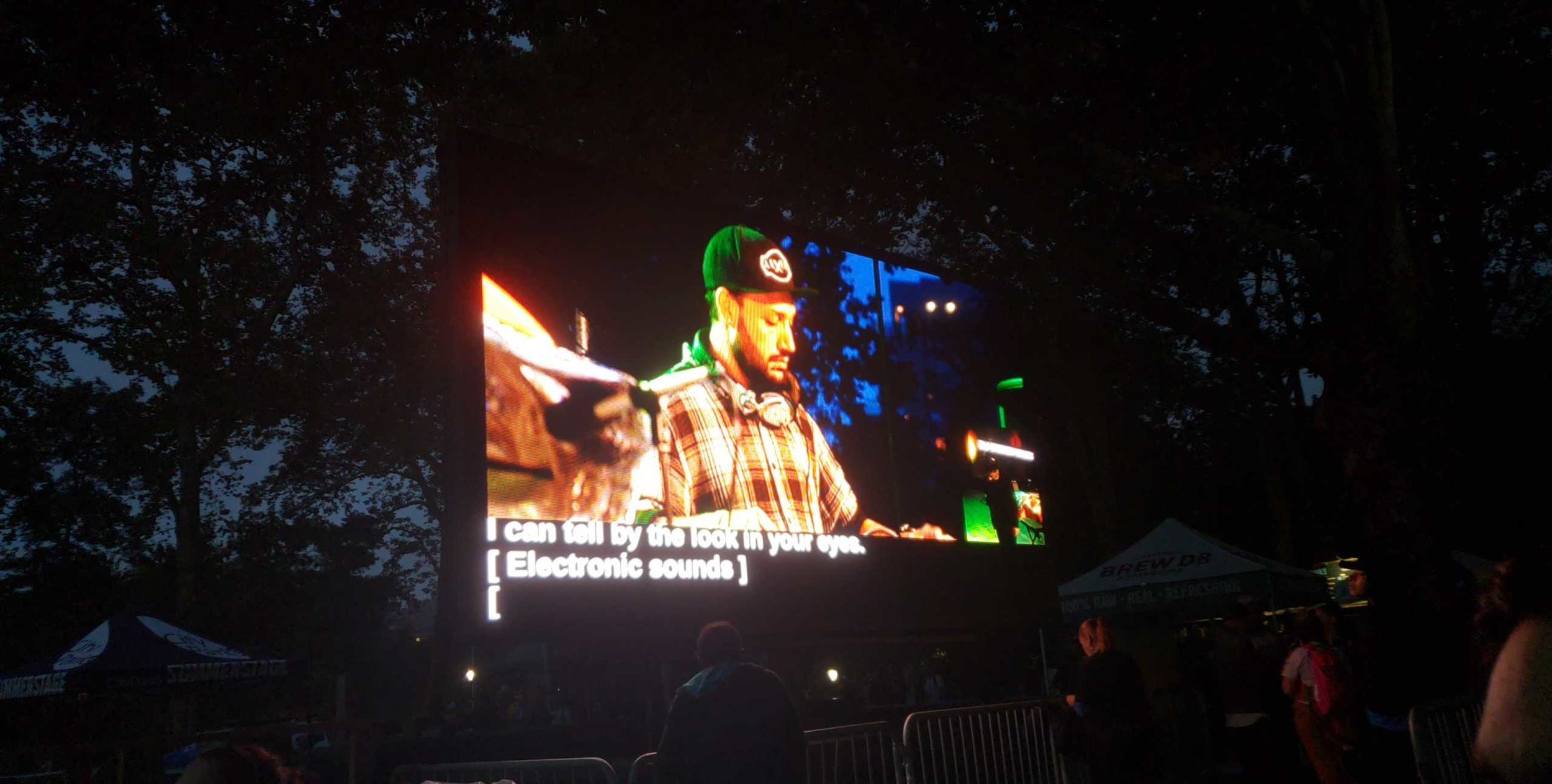 Robbie Wilde, a deaf DJ, performing at the No Barriers Concert in Central Park.