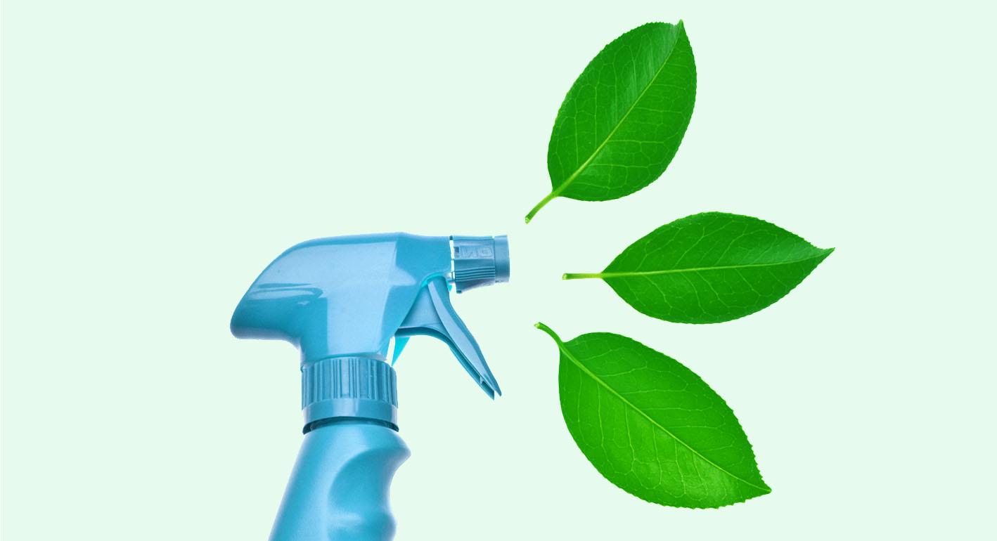 GreenCleaning.jpg