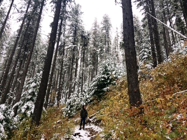 Travel--spokane hiking in snow.JPG