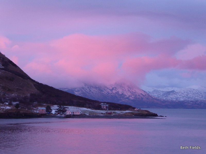 Harvester in winter---pink.JPG