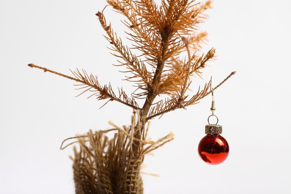 Christmas--dying little tree.jpg