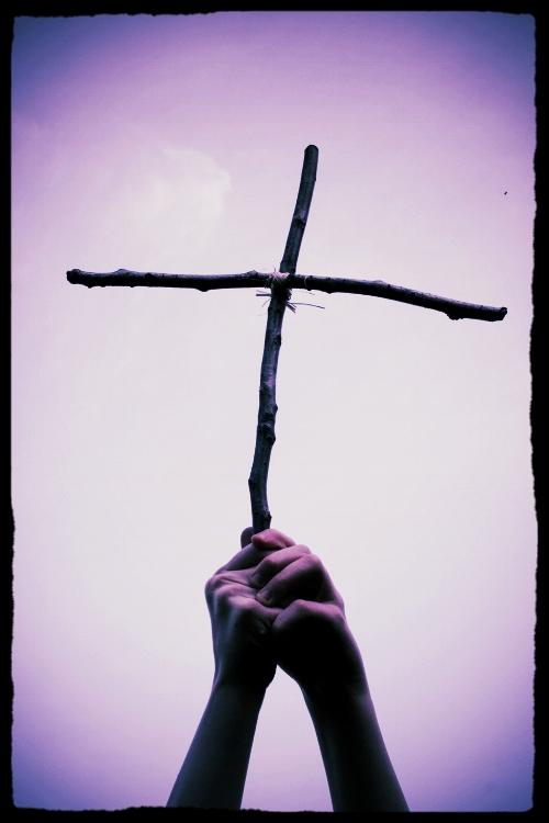 Cross-twig.jpg