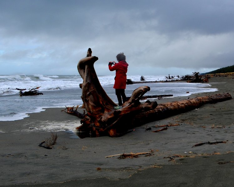 Yakutat beach--leslie on log.jpeg