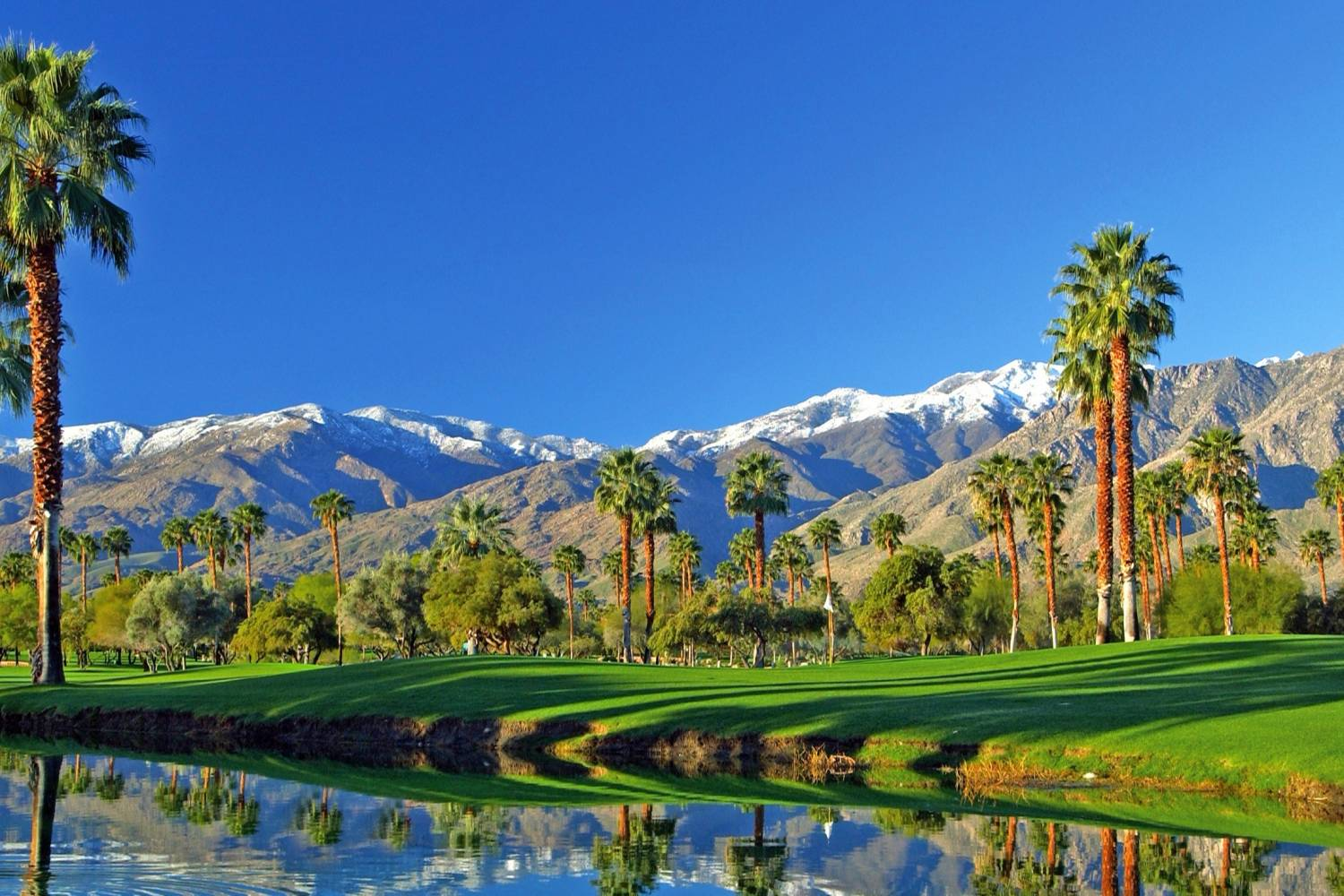 palm springs golf course.jpg
