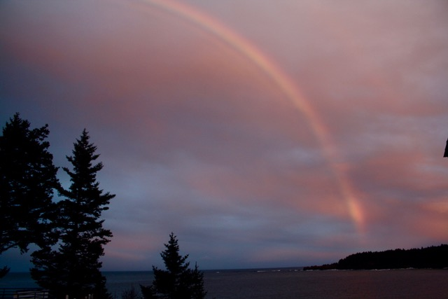 Rainbow--our kodiak backyard.jpeg