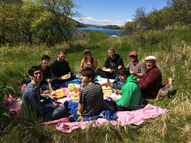Harvester--picnic in grass.jpeg