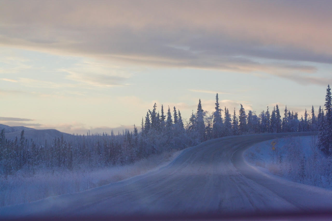 day seven---misty road.jpg