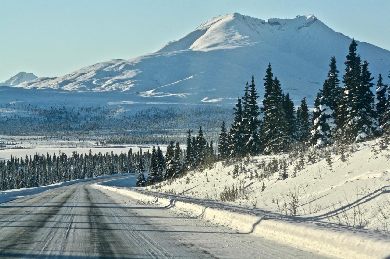 day 7--snowy road, spruce+snowy mtn.jpg