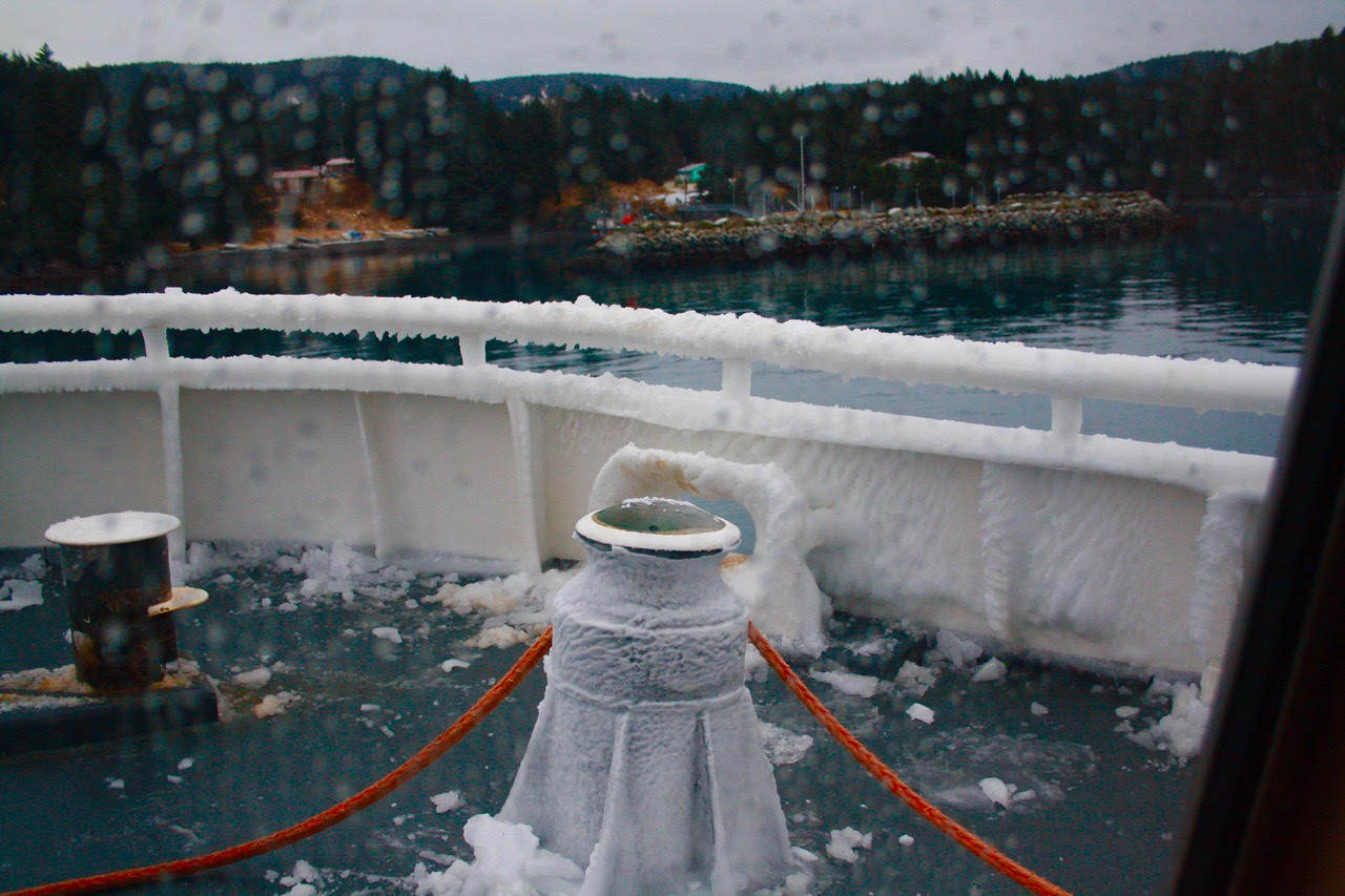 day 8--ferry ice on stanchion and rail.jpg