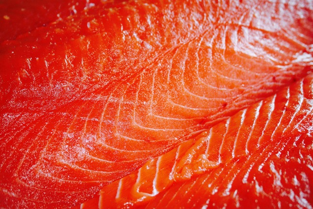 king salmon meat---pattern.jpeg