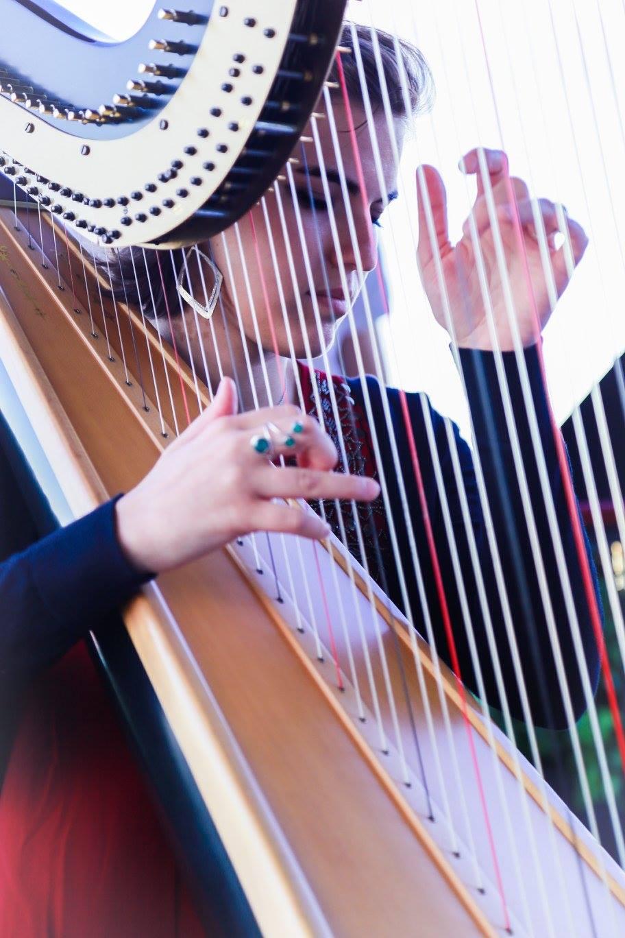 Harp pia Dashina gig.jpg