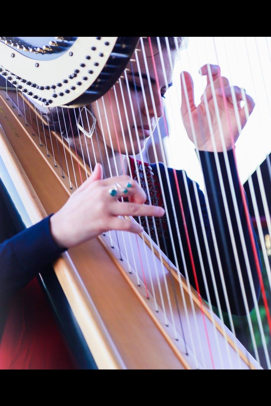 SINGING HARPIST - SOLO HARP / VOICEORDUO WITH PERCUSSION$600* and up.