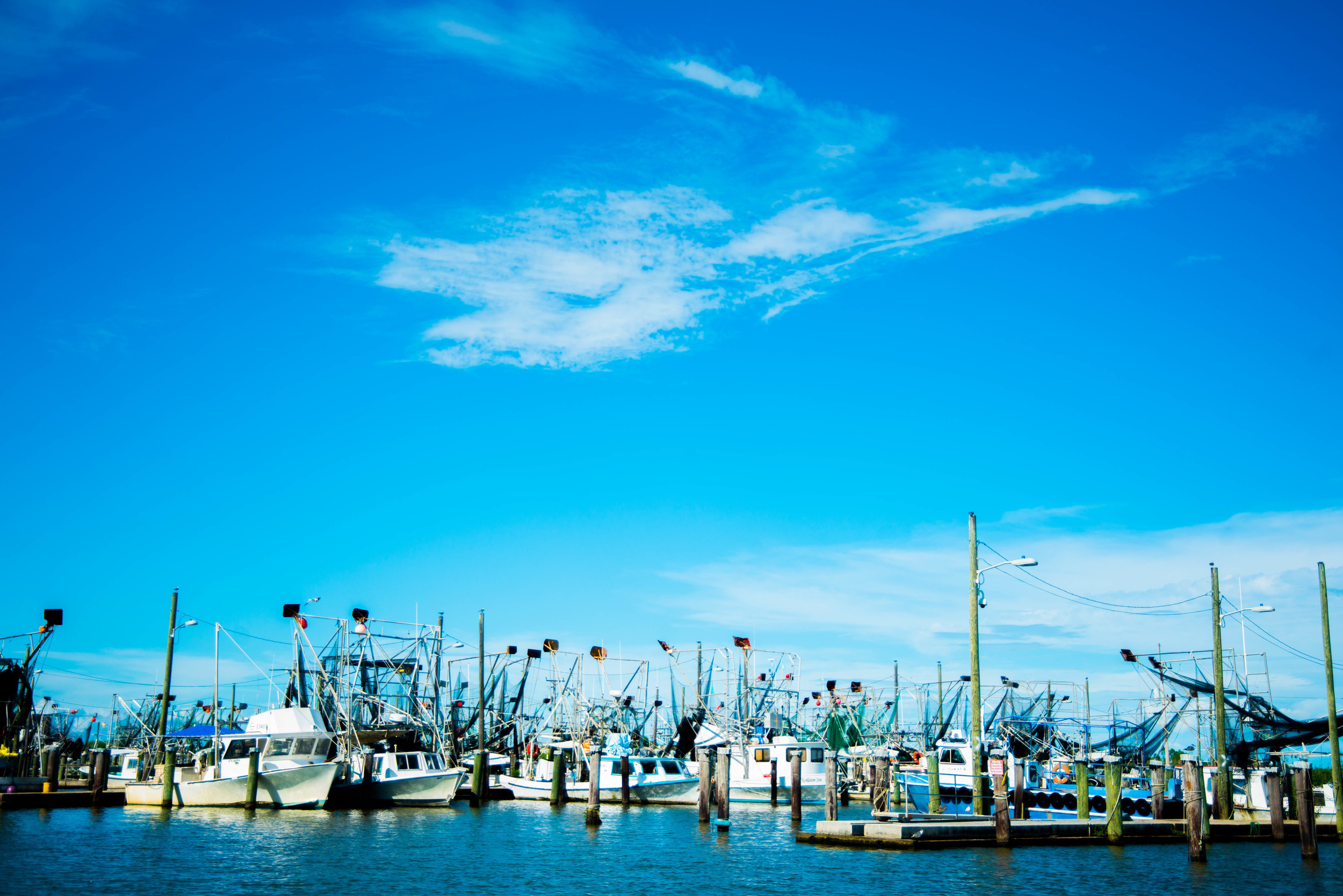 Venice, Louisiana, was the southernmost town along the Mississippi river, and our final river town of the journey. This relaxed fishing town played every bit the part of the southern 'not hurrying for anyone' attitude we had expected.