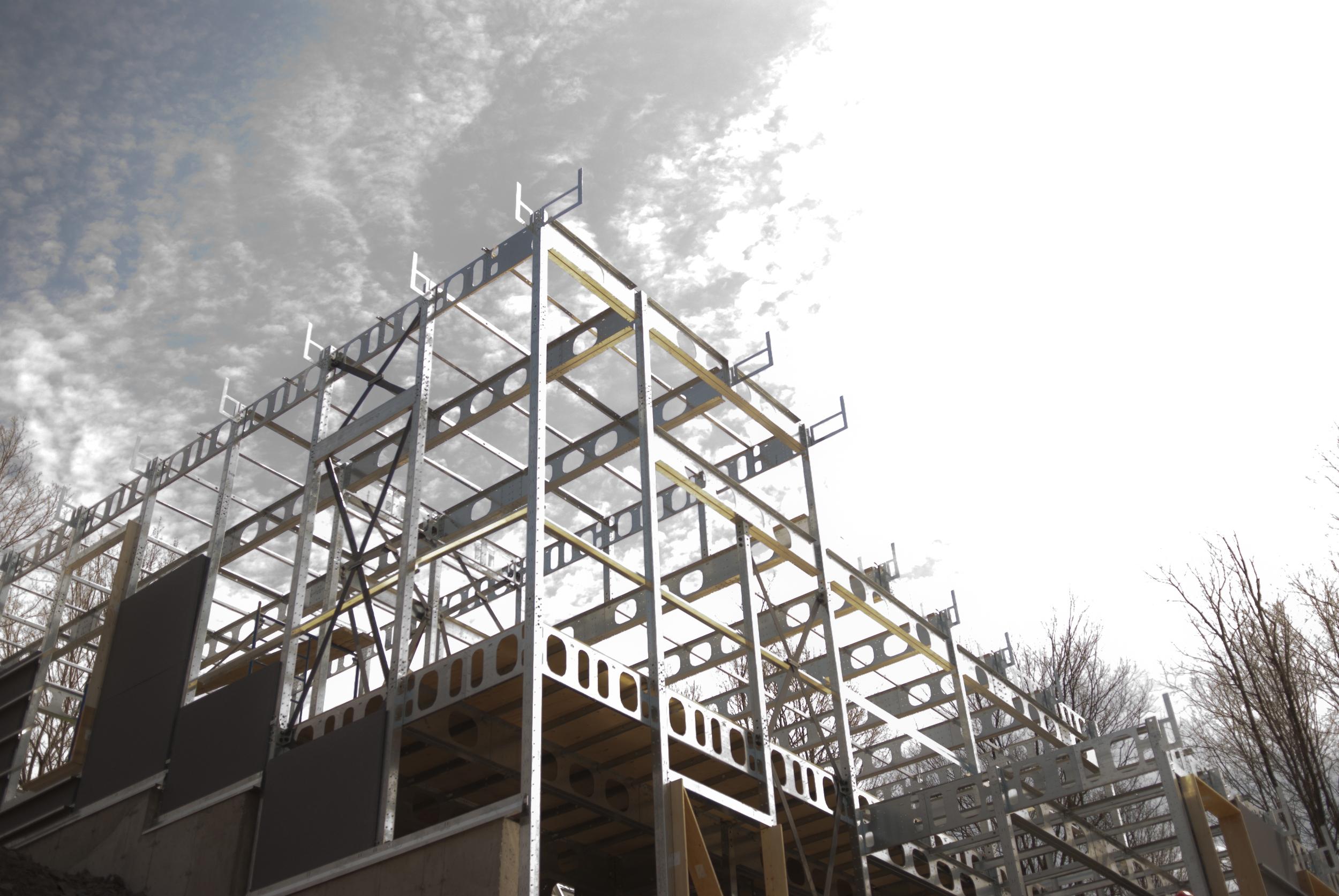 2014_BONE_Structure (35).jpg