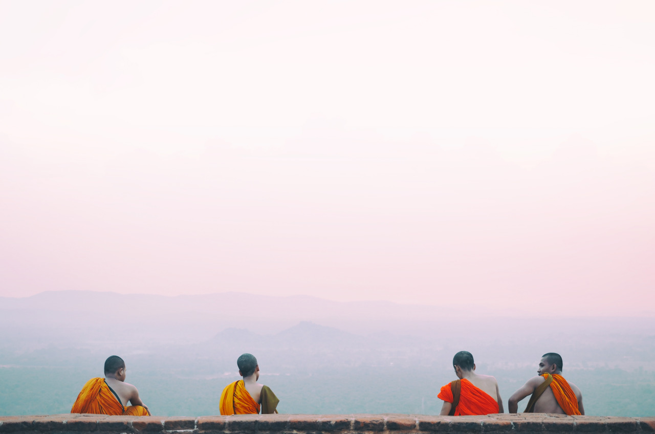 Just when I thought the sunset colours and view could not get any better, the company of monks made for a perfect moment and capture.   — with  Moe Elrifai  in  Sigiriya, Sri Lanka .    Olympus OM-D E-M1 + 12-40mm f/2.8