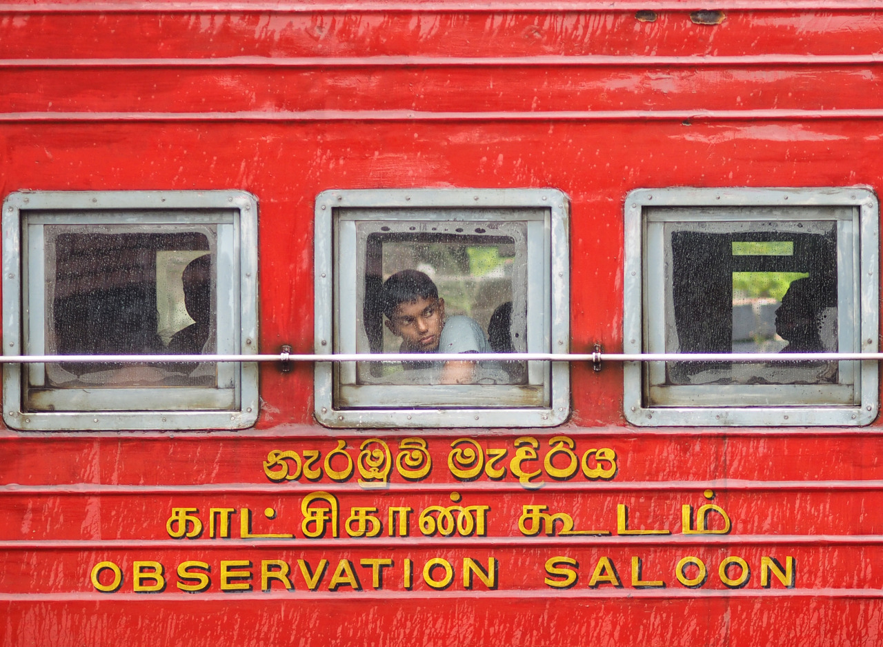 Waiting for my train to Ella from  Hatton, Sri Lanka .   Had just waved goodbye to some new friends from Spain. The next train to Ella was delayed and I was a little annoyed because of it. I now realise and am reminded that things happen for a reason. I now had more time at the station and met a beautiful family, my friend travelling with me spent time feeding the stray dogs determined to save them all .   I am now grateful for the delay as I was able to capture this image, which still remains a favourite. Lesson learnt, just go with it and don't rush.    Olympus OM-D E-M1 + 75mm f1.8