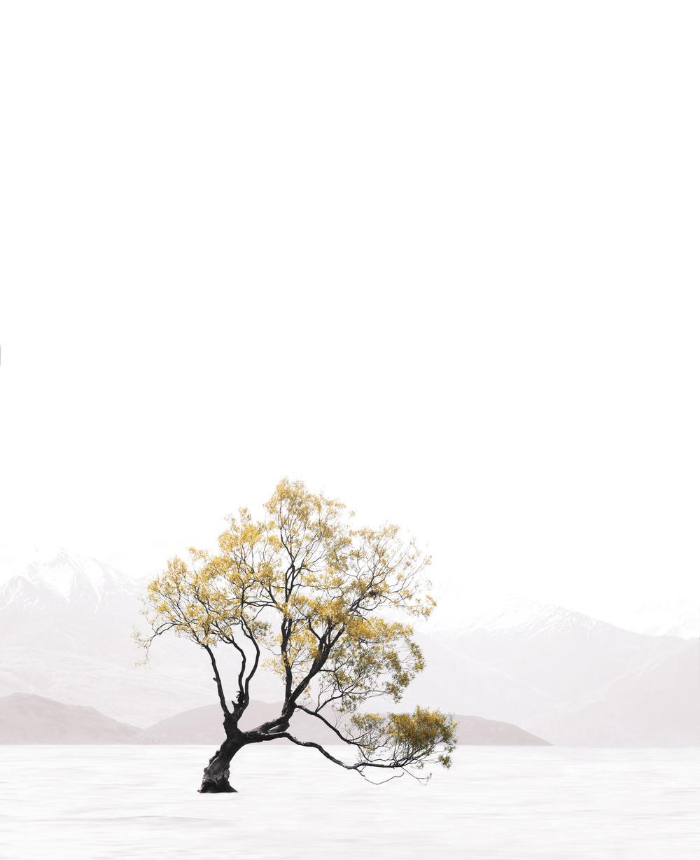wanaka.jpg