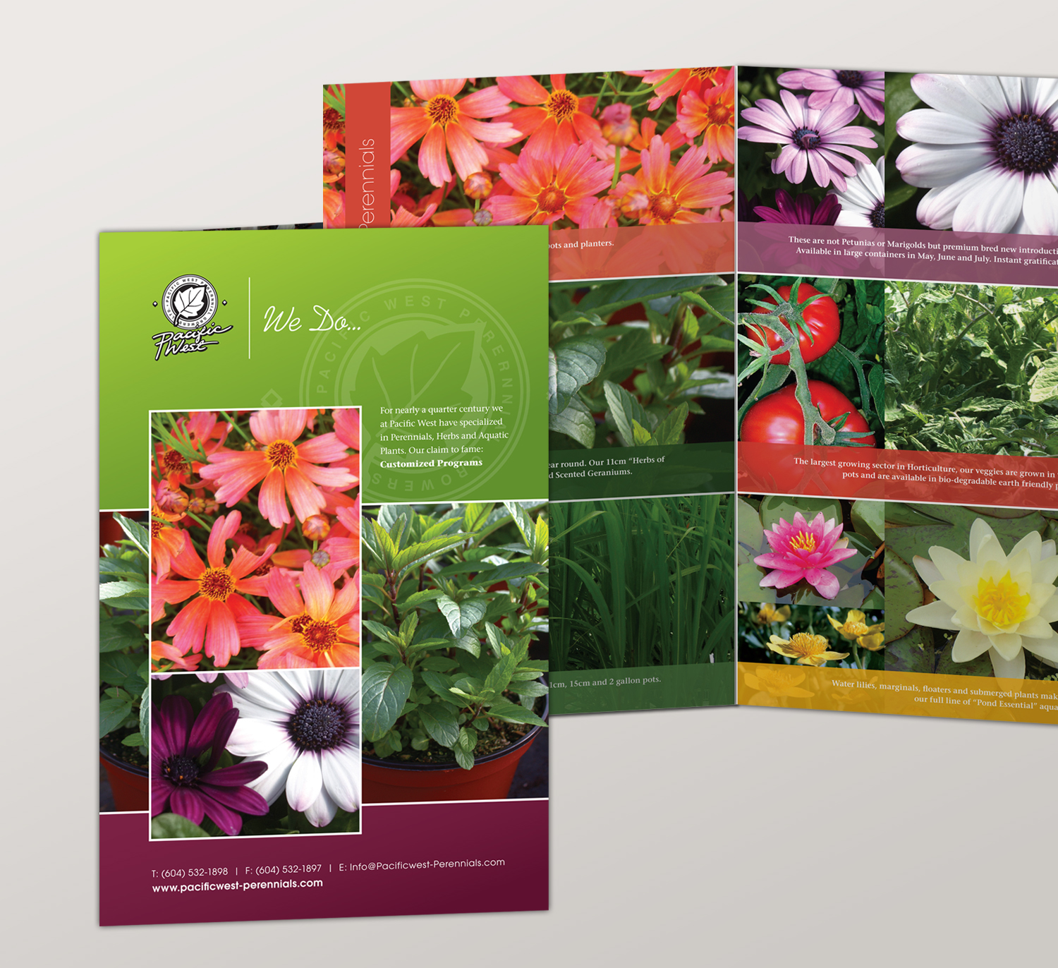 <strong>Pacific West Perrenials</strong> half-fold seasonal product brochure