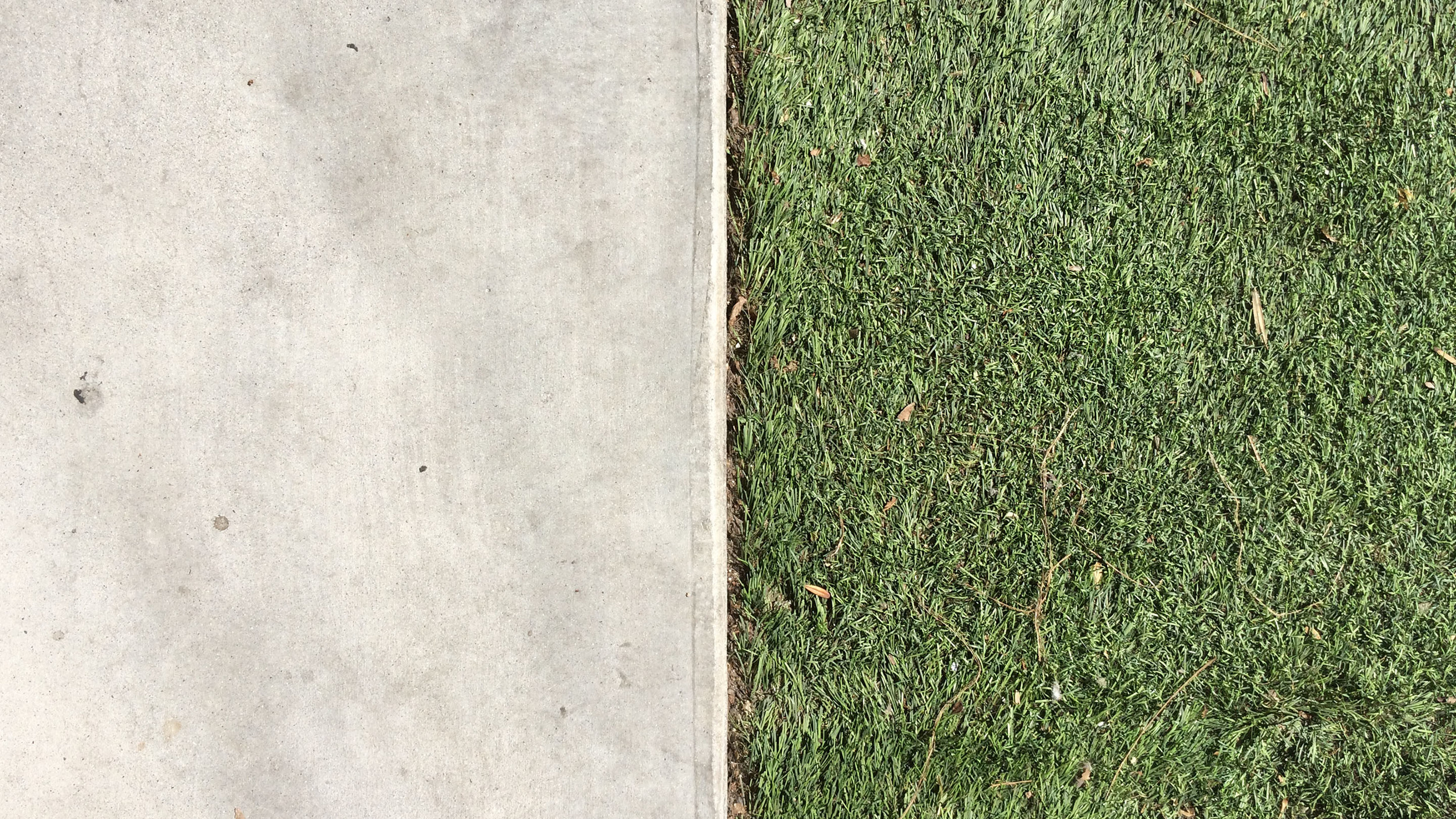 A hard divide between concrete and synthetic turf on a sidewalk on 11th Street in the South Park neighborhood of Downtown Los Angeles. (Photograph by Ian Besler)