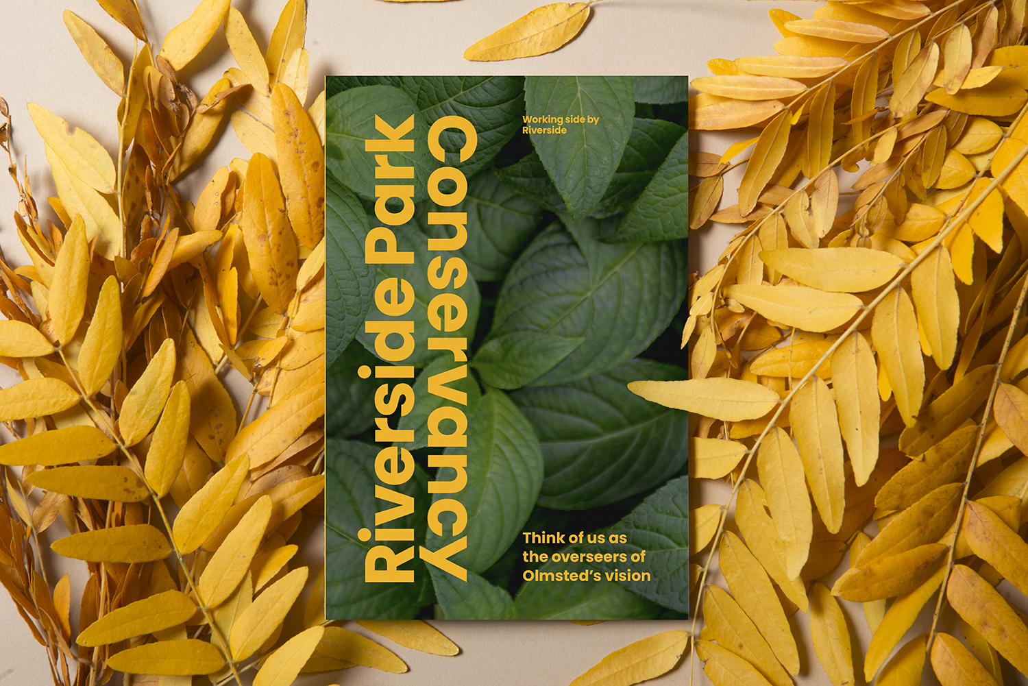 RSPC_FoldOut-CoverLeaves.png