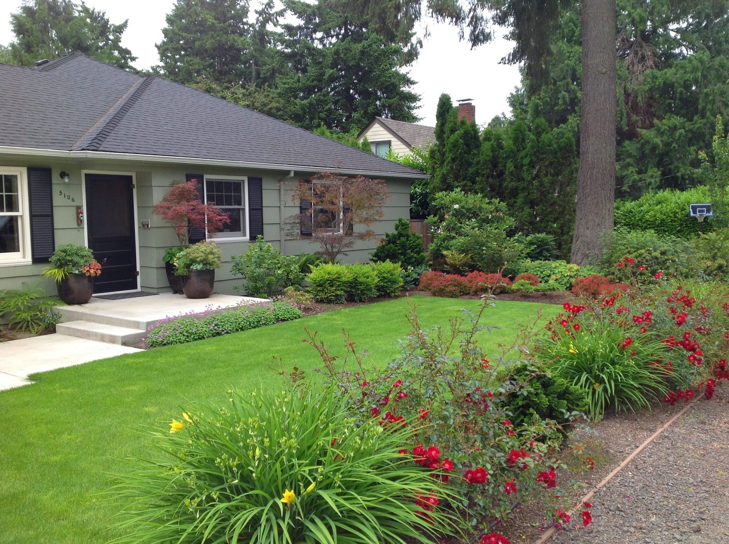 Rathkey front yard, pho by Terry, sent 5-26-2015, FAVE.JPG