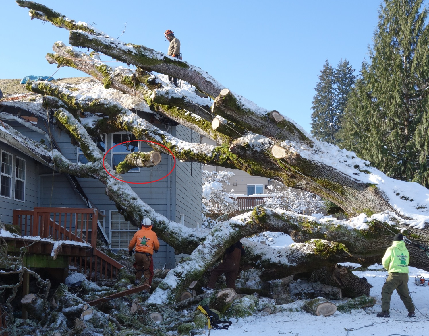 Lowering the log