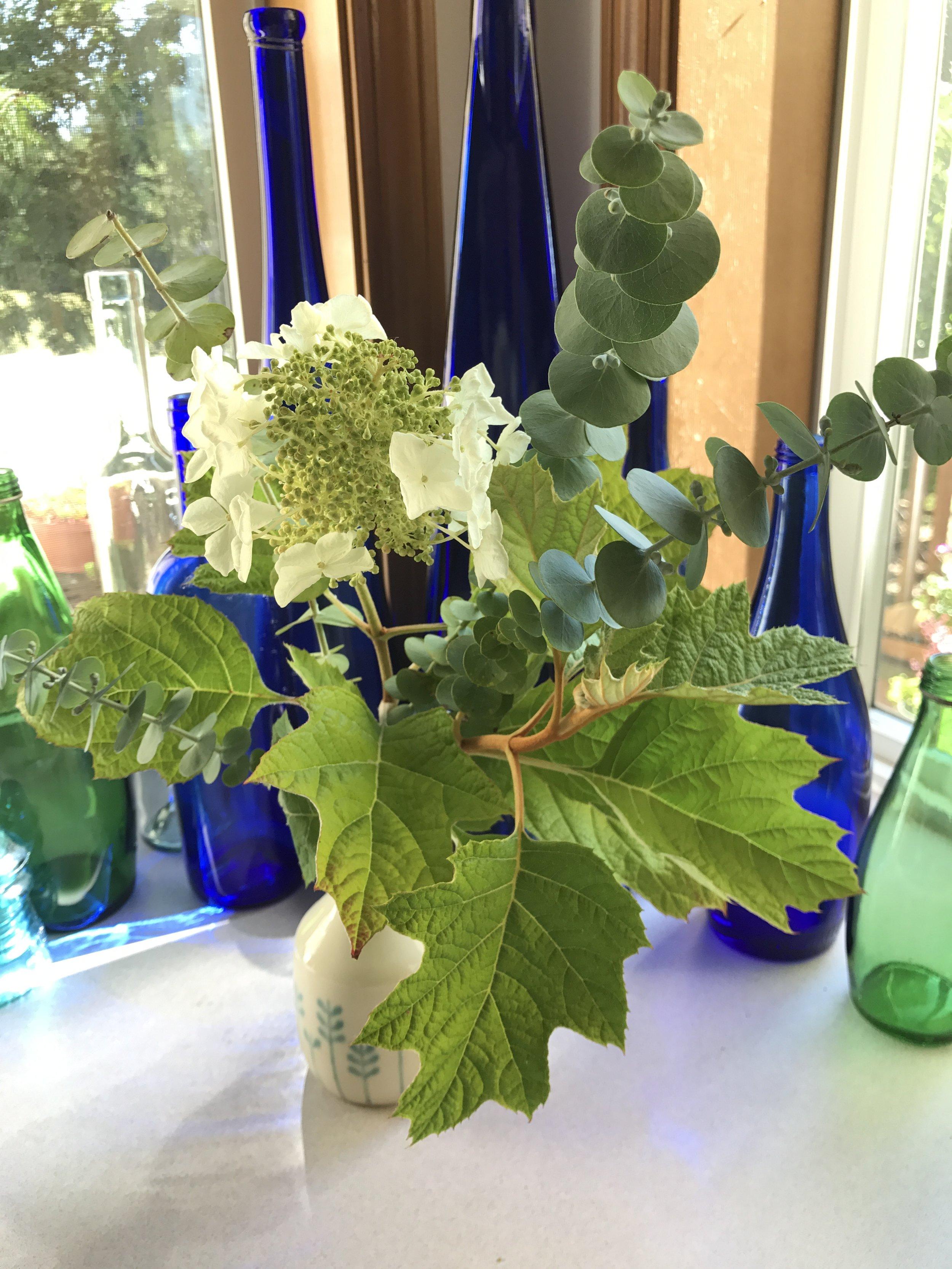 AlyseLansing_2017-07-10_Oakleaf-Euc-Vase_1