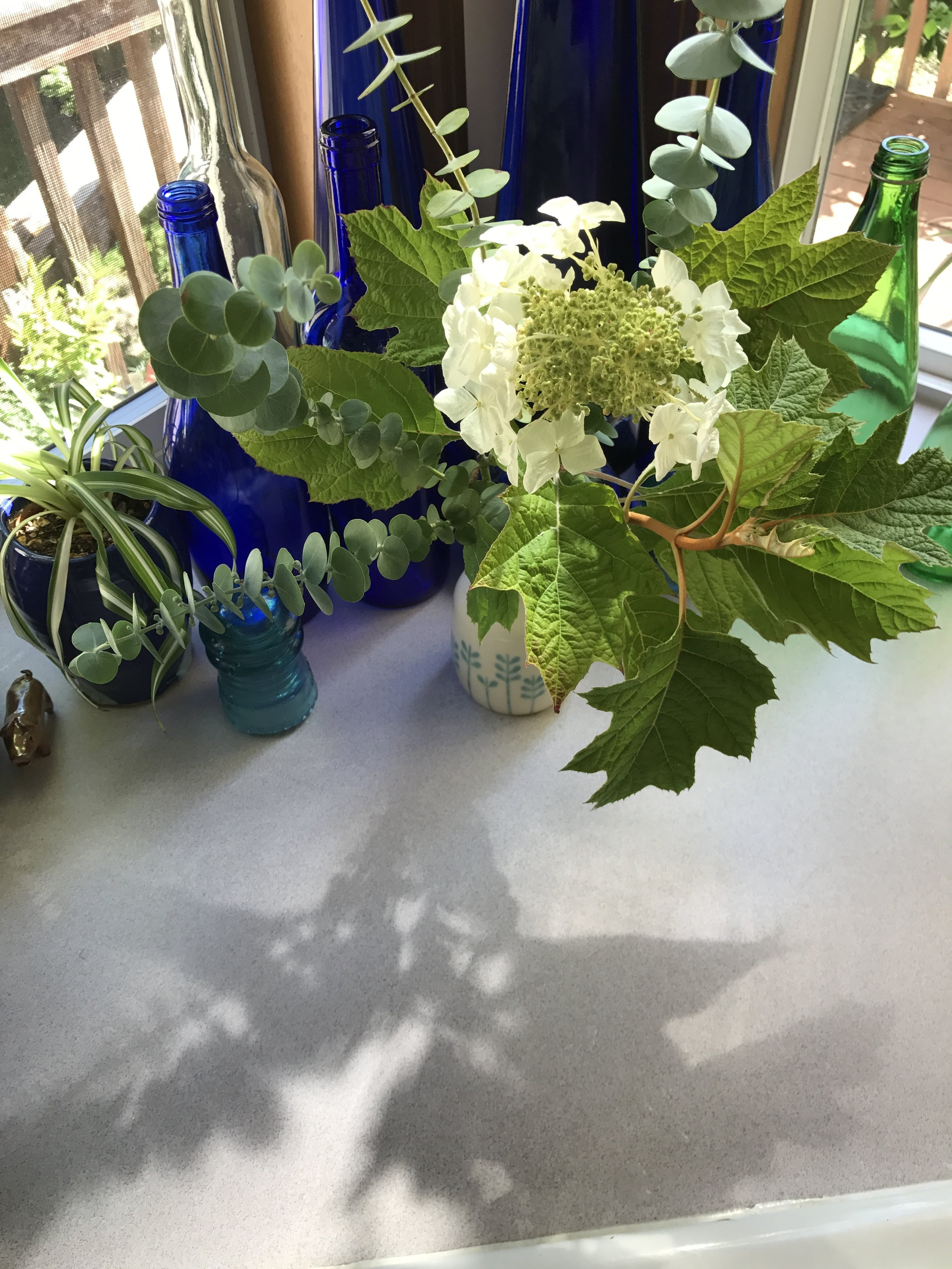 AlyseLansing_2017-07-10_Oakleaf-Euc-Vase_8