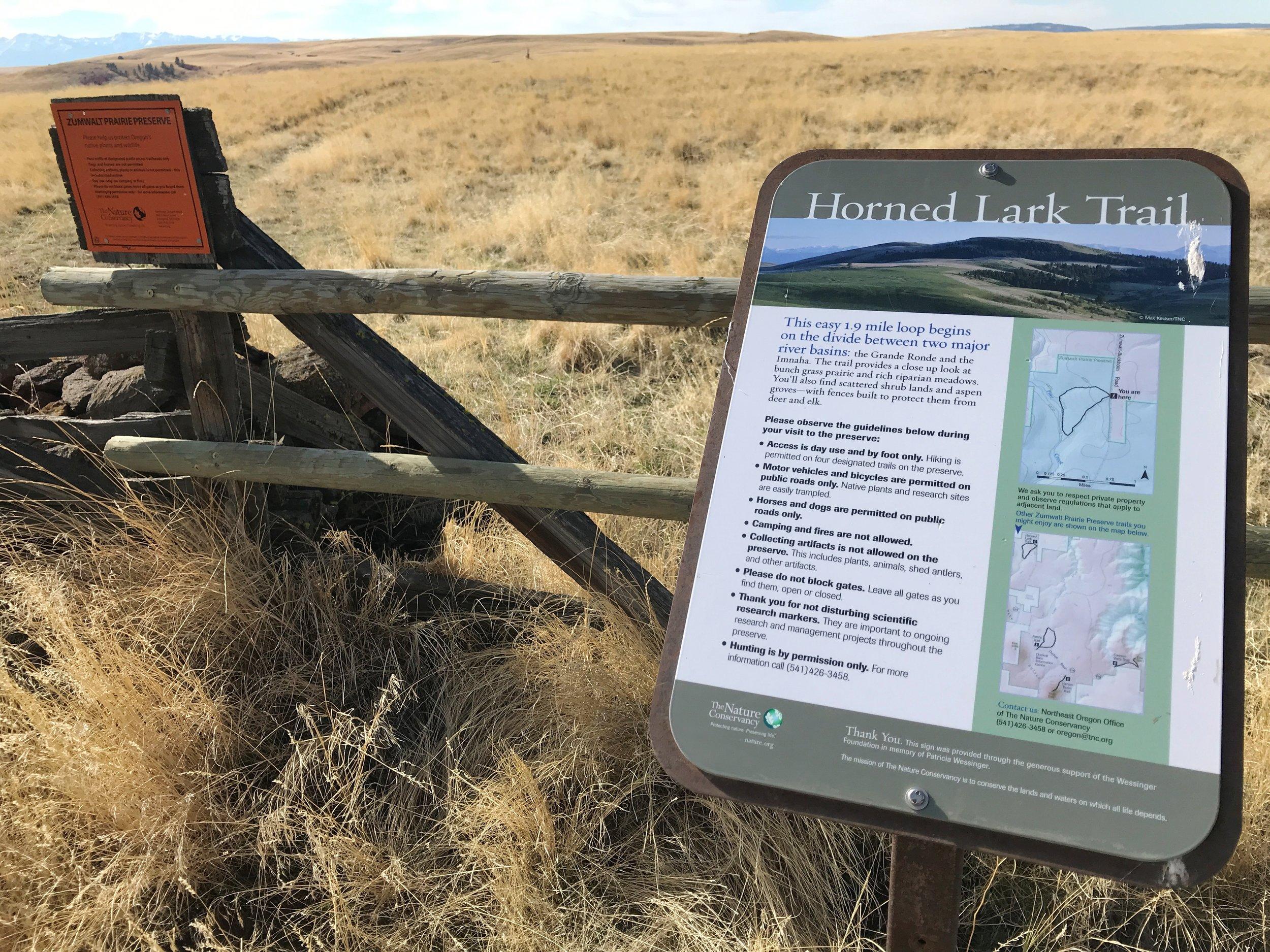 2017-10-25 13.23.43 Horned Lark Trail.jpg