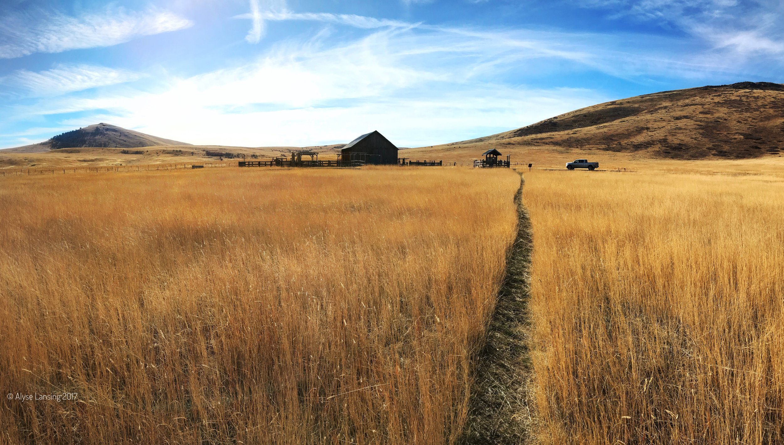 AlyseLansing_Duckett-Barn-and-Patti's-Trail