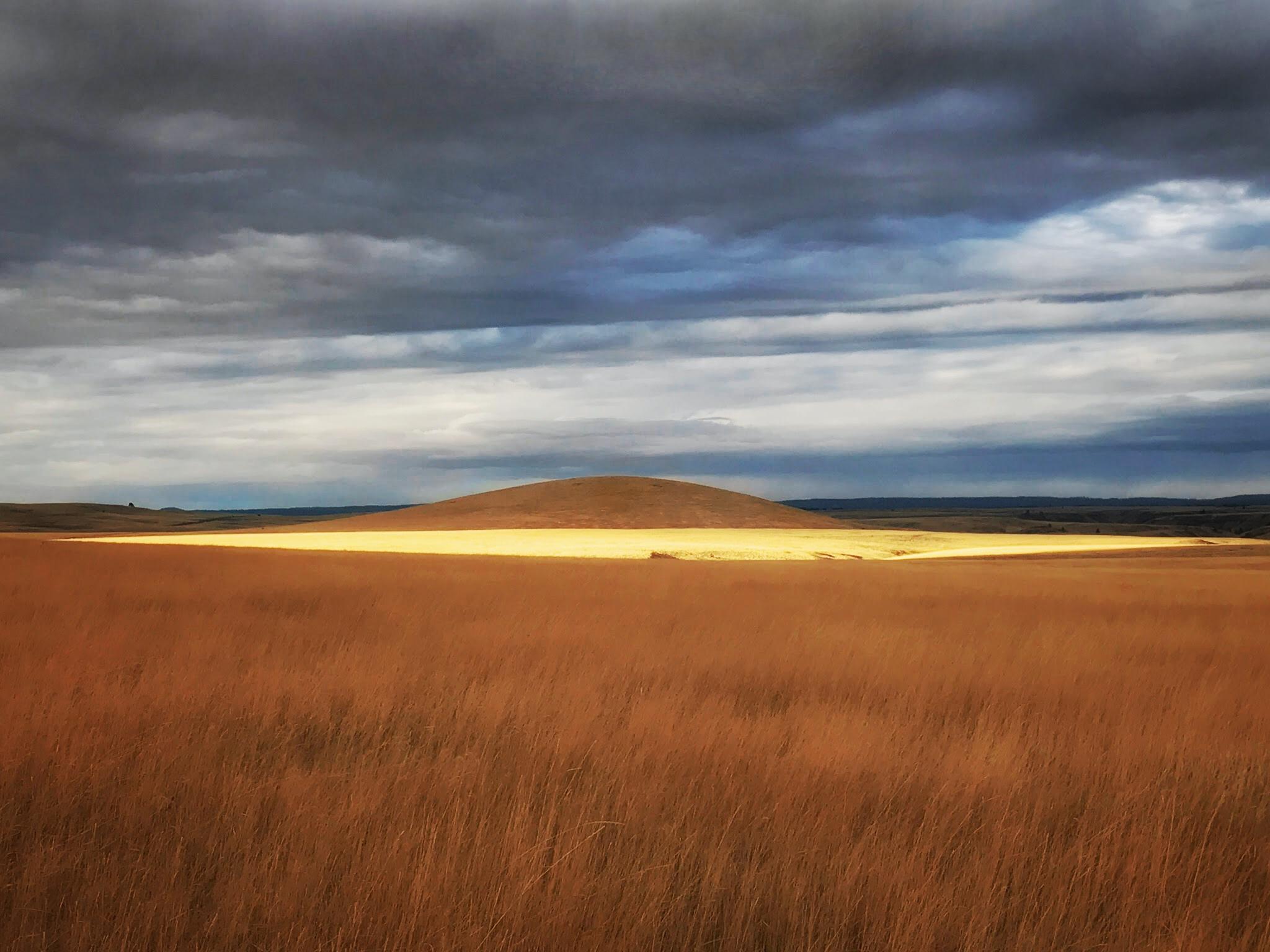 Zumwalt Prairie heaven