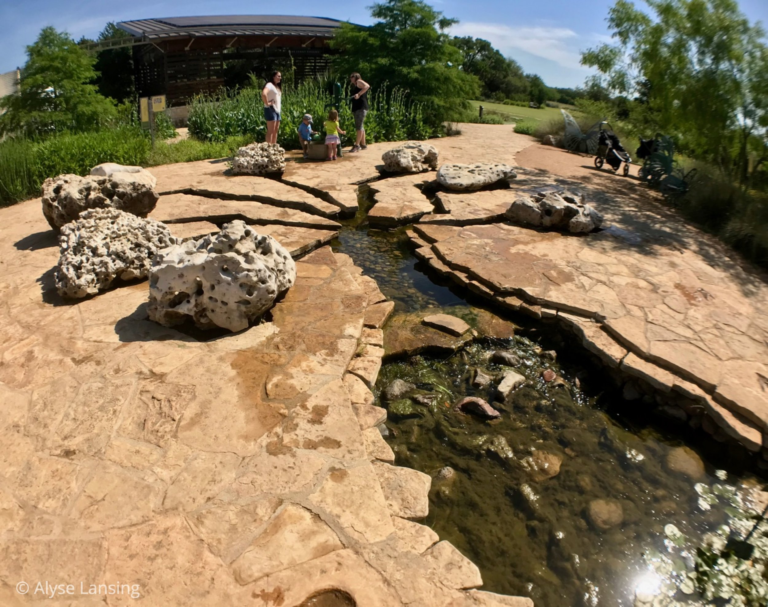 """The """"headwaters"""" of Dinosaur Creek (even though they are really the out-take). It has the feeling of a giant dinosaur track."""